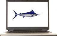 Phishers Keep Up Their Antics on Social-Networking Sites, Online Classifieds, Gaming Industries