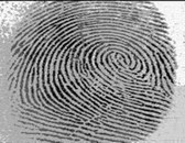 NIST Adds DNA, Footprints to Biometric Standard - top government contractors - best government contracting event
