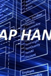 Thierry Audas: SAP Uses Open Architecture Strategy for HANA Platform - top government contractors - best government contracting event