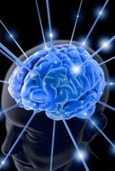 DARPA to Seek Industry Participants for Neuroplasticity Learning Research Program - top government contractors - best government contracting event