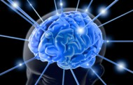 DARPA to Seek Industry Participants for Neuroplasticity Learning Research Program