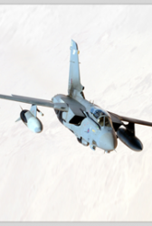 Report: US Expresses Optimism on Germany's Tornado Fighter Jet Replacement Program - top government contractors - best government contracting event