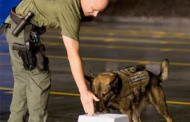 Johns Hopkins APL Licenses Govt-Funded Explosive Detection Canine Training Aid to Gallant