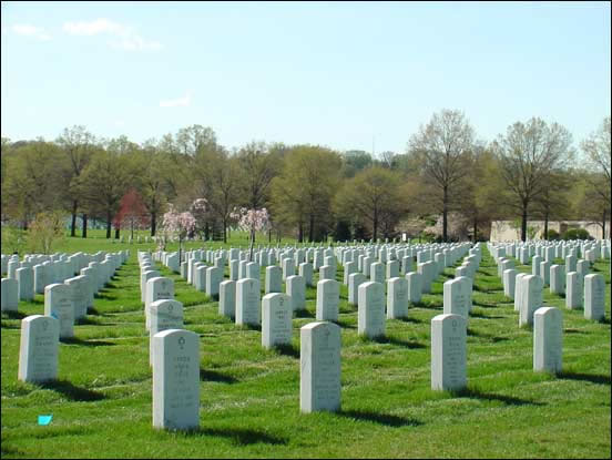 ExecutiveBiz - Report Spells Out Cause of Arlington National Cemetery Troubles